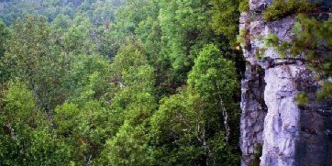 Young woman dies after falling off cliff at Rattlesnake Point in Milton