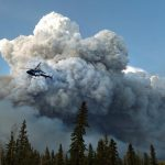 Smoke from Wildfires Can Have Lasting Climate Impact, A New Study Reveals