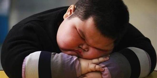 Children's Obesity Rates in Rich Countries May Have Peaked, Says New Study