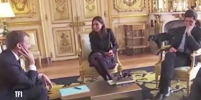 Macron's Dog Busted Peeing on Palace Fireplace (Video)