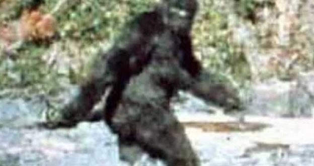 """The """"First Recorded"""" Evidence Of Big Foot Is 50 Year Old"""