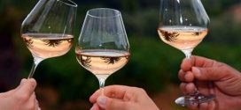Alcohol Linked to Several Types of Cancer, Says New Study