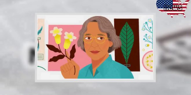 Ynés Mexía: Google Doodle Honors tenacious Mexican-American and explorer