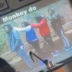 Longwood High School monkeys, Students Sue Over Racially-Insensitive